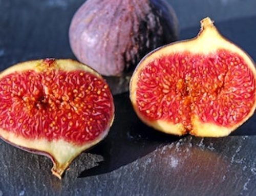 Producing organic figs and making sure we deliver them fresh.